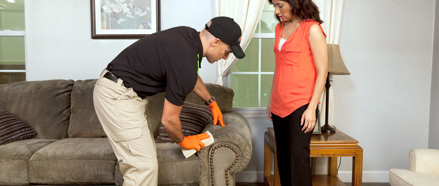 Belfast, ME carpet upholstery cleaning